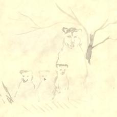 11 Bear Family